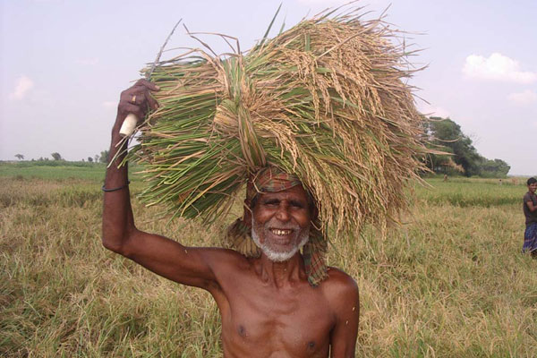 Farmer_with_peddy_Prothom_Alo_Aprl27_2011.jpg